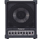 roland cm 30 cube monitor pa system review pa system reviews. Black Bedroom Furniture Sets. Home Design Ideas